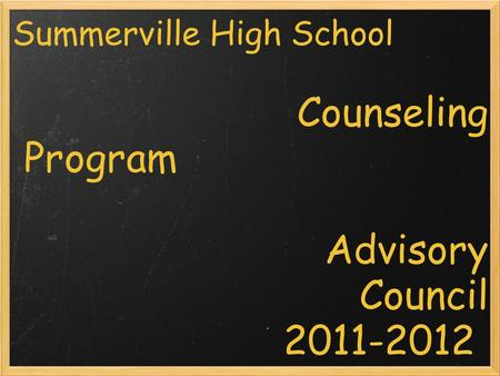 Summerville High School Counseling Program Advisory Council 2011-2012.