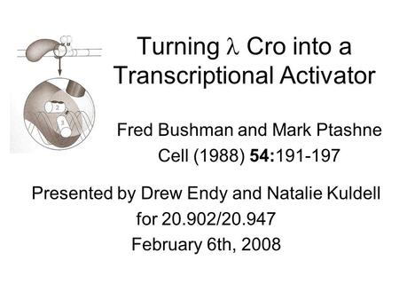 Turning Cro into a Transcriptional Activator Fred Bushman and Mark Ptashne Cell (1988) 54:191-197 Presented by Drew Endy and Natalie Kuldell for 20.902/20.947.