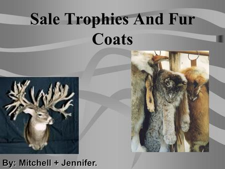 Sale Trophies And Fur Coats By: Mitchell + Jennifer.