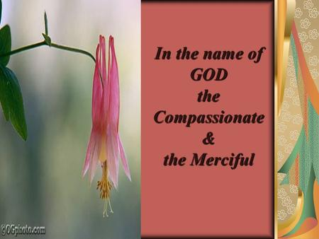In the name of GOD the Compassionate & the Merciful.