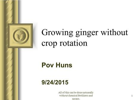 9/24/2015 All of this can be done natuarally without chemical fertilizers and sprays. 1 Growing ginger without crop rotation Pov Huns This presentation.