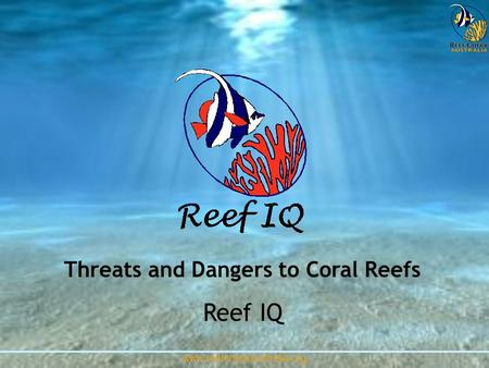 Threats and Dangers to Coral Reefs
