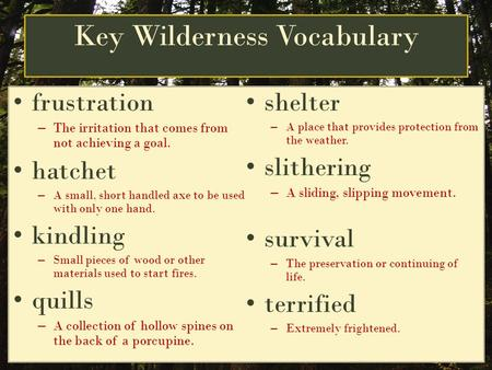 Key Wilderness Vocabulary frustration –T–The irritation that comes from not achieving a goal. hatchet –A–A small, short handled axe to be used with only.