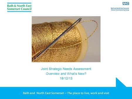Bath and North East Somerset – The place to live, work and visit Joint Strategic Needs Assessment Overview and What's New? 18/12/13.