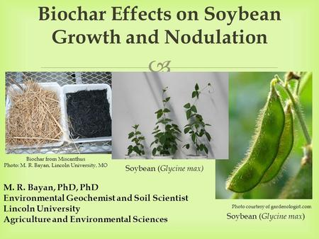 Biochar Effects on Soybean Growth and Nodulation
