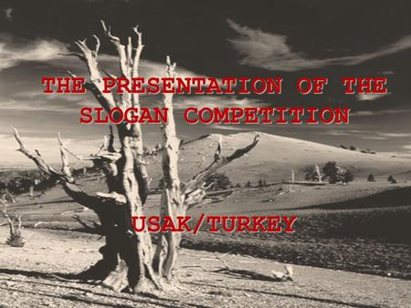 THE PRESENTATION OF THE SLOGAN COMPETITION USAK/TURKEY.