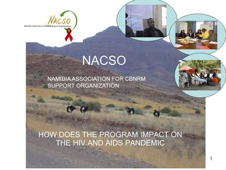 1 NACSO HOW DOES THE PROGRAM IMPACT ON THE HIV AND AIDS PANDEMIC NAMIBIA ASSOCIATION FOR CBNRM SUPPORT ORGANIZATION.