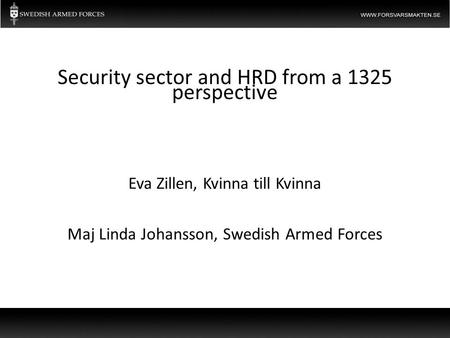 Eva Zillen, Kvinna till Kvinna Maj Linda Johansson, Swedish Armed Forces Security sector and HRD from a 1325 perspective.