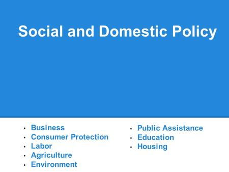 Social and Domestic Policy Business Consumer Protection Labor Agriculture Environment Public Assistance Education Housing.