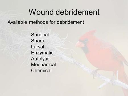 Wound debridement Available methods for debridement Surgical Sharp Larval Enzymatic Autolytic Mechanical Chemical.