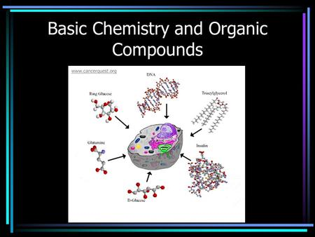 Basic Chemistry and Organic Compounds. Atoms : smallest unit of matter Protons: + charge, in nucleus Neutrons: 0 charge, in nucleus Electrons: - charge,