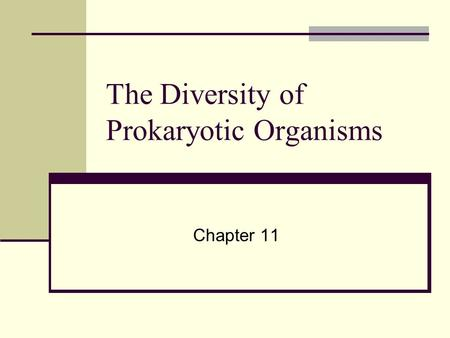 The Diversity of Prokaryotic Organisms Chapter 11.