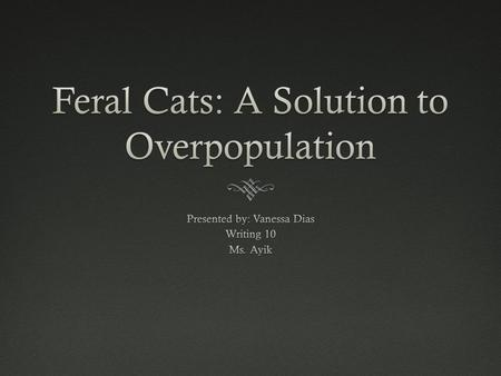 """Throughout the country this year, forty million feral kittens will be born, but twenty million will die"" (Manning)"