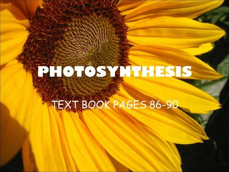 PHOTOSYNTHESIS TEXT BOOK PAGES 86-90. BOTH muscle and plant cells need energy to live. –Muscle cells need energy to help you move –plant cells need energy.