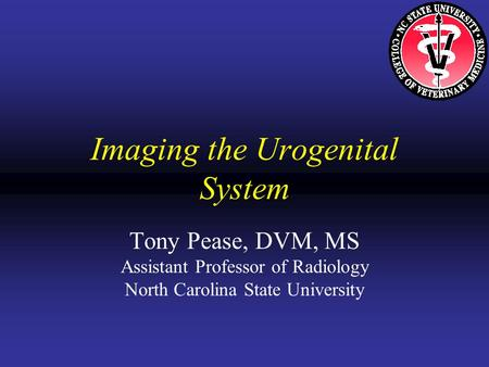 Imaging the Urogenital System Tony Pease, DVM, MS Assistant Professor of Radiology North Carolina State University.