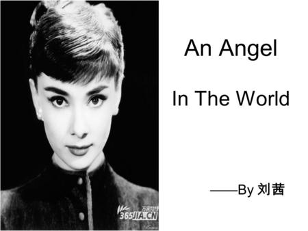 An Angel In The World ——By 刘茜. She is synonymous with elegance. She is the combination of women and angles. She is a holy and beautiful scale. We are.