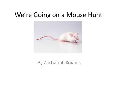 We're Going on a Mouse Hunt By Zachariah Koymis. We're going on a Mouse Hunt. We're going to catch a big one. What a beautiful day! We're not scared.
