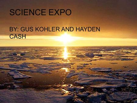SCIENCE EXPO BY: GUS KOHLER AND HAYDEN CASH. THE STORY OF GLOBAL WARMING Global Warming has become a threat to everything on earth. The green house effect.