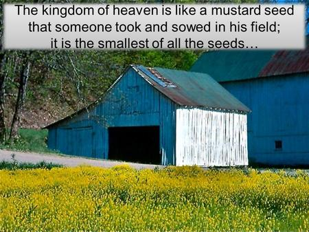 it is the smallest of all the seeds…