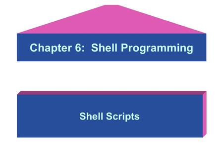 Chapter 6: <strong>Shell</strong> Programming <strong>Shell</strong> <strong>Scripts</strong>. Using the UNIX <strong>Shell</strong> as a Programming Objectives: After studying this lesson, you should be able to: –Learn.