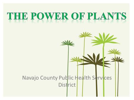 Navajo County Public Health Services District. Cherilyn Yazzie, Program Manager 928-524-4750 ext. 18.