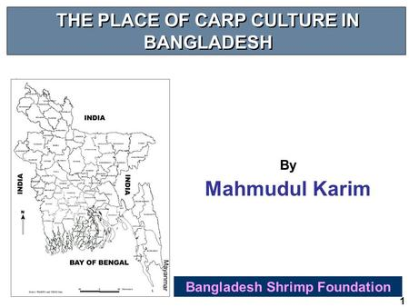 1 THE PLACE OF CARP CULTURE IN BANGLADESH Bangladesh Shrimp Foundation By Mahmudul Karim.