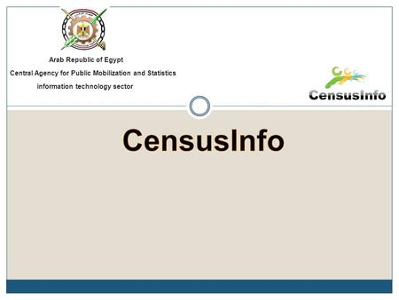 Arab Republic of Egypt Central Agency for Public Mobilization and Statistics information technology sector.