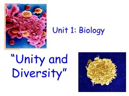 "Unit 1: Biology ""Unity and Diversity"". WHAT YOU NEED  Nelson Biology VCE Units 1&2  Student Resource and Activity Manual 2014 Biozone (leave in classroom)"