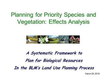March 29, 2010 Planning for Priority Species and Vegetation: Effects Analysis A Systematic Framework to Plan for Biological Resources In the BLM's Land.
