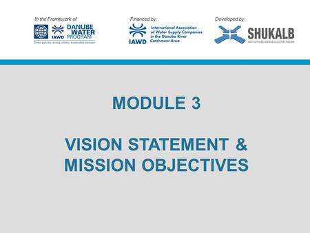 In the Framework of: Financed by: Developed by: MODULE 3 VISION STATEMENT & MISSION OBJECTIVES.