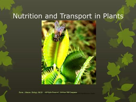Nutrition and Transport in Plants Raven - Johnson - Biology: 6th Ed. - All Rights Reserved - McGraw Hill Companies Copyright © McGraw-Hill Companies Permission.