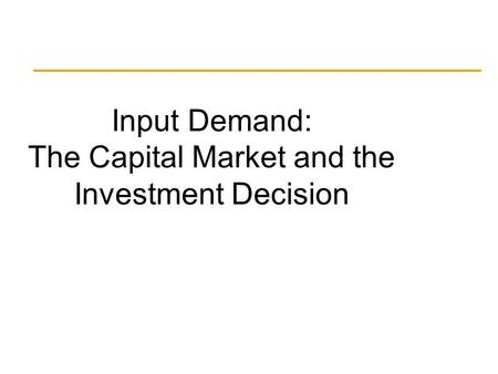 Input Demand: The Capital Market and the Investment Decision.