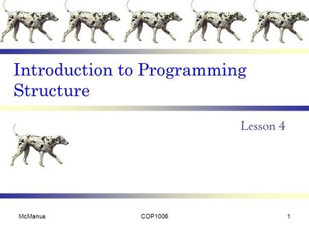 Introduction to Programming Structure Lesson 4 McManusCOP10061.