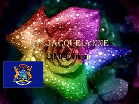 BY :JACQUELYNNE STATE OF Michigan.