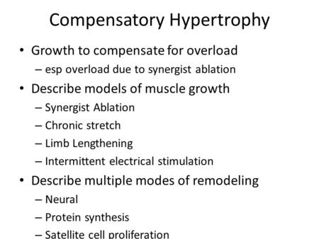 Compensatory Hypertrophy Growth to compensate for overload – esp overload due to synergist ablation Describe models of muscle growth – Synergist Ablation.