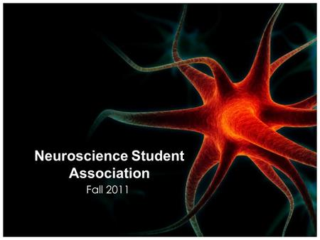 Neuroscience Student Association Fall 2011 What is the NSA? The Neuroscience Student Association is an organization dedicated to providing its members.