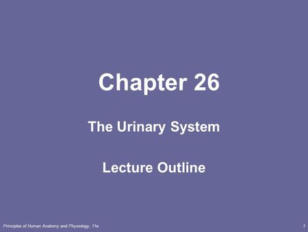 urinary system outline -urinary system functions to regulate blood volume and conc, remove wastes, and produce urine filtrate = everything in blood plasma except.