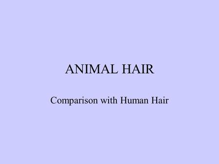 ANIMAL HAIR Comparison with Human Hair. ANIMAL HAIRS Animal hairs are classified into the following three basic types. Guard hairs that form the outer.