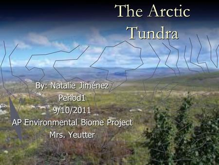 The Arctic Tundra By: Natalie Jiménez Period19/10/2011 AP Environmental Biome Project Mrs. Yeutter.