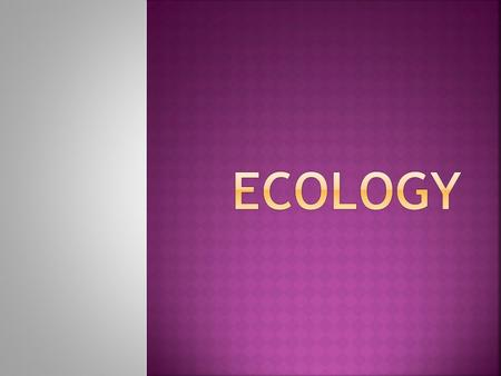 Ecology is the study of interactions among organisms and their environment.