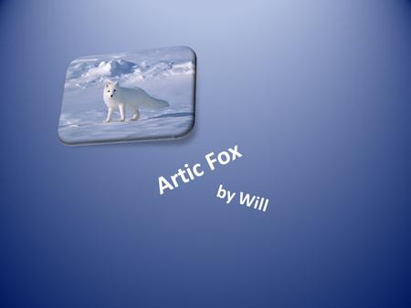 Artic Fox by Will Introduction Hi my name is Will. My animal is a artic fox.
