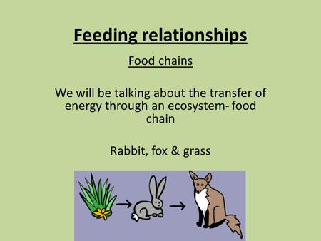 Feeding relationships Food chains We will be talking about the transfer of energy through an ecosystem- food chain Rabbit, fox & grass.