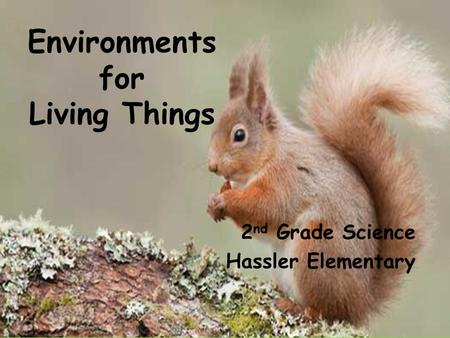 Environments for Living Things 2 nd Grade Science Hassler Elementary.