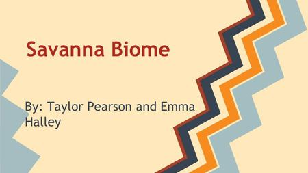 Savanna Biome By: Taylor Pearson and Emma Halley.