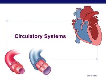 AP Biology 2008-2009 Circulatory Systems AP Biology Overcoming limitations of diffusion O2O2 CHO aa CH CO 2 NH 3 aa O2O2 CH aa CO 2 NH 3 O2O2 aa CH aa.