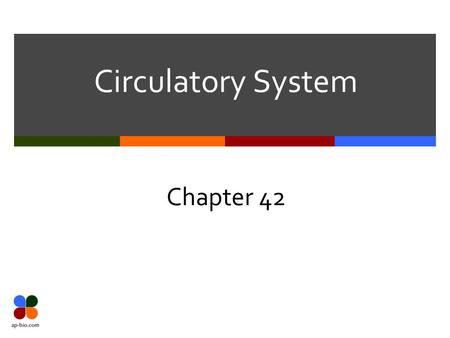 Circulatory System Chapter 42. Slide 2 of 20 Circulation – The basics  3 basic parts  Blood – What type of tissue?  Vessels – tubes for blood movement.