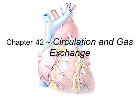 Chapter 42 ~ Circulation and Gas Exchange Exchange of materials Animal cells exchange material across their cell membrane –fuels for energy –nutrients.