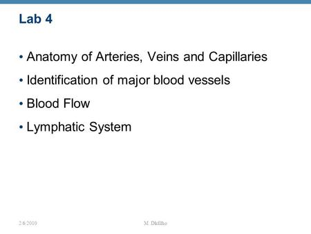 1 Lab 4 Anatomy of Arteries, Veins and Capillaries Identification of major blood vessels Blood Flow Lymphatic System 2/6/2010M. Dufilho.