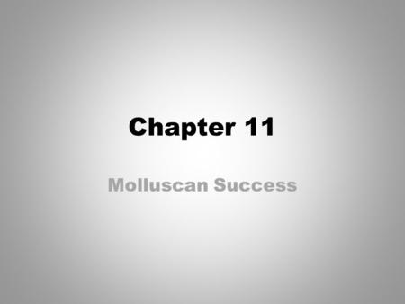 Chapter 11 Molluscan Success.
