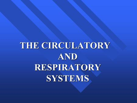 THE CIRCULATORY AND RESPIRATORY SYSTEMS. The Circulatory System n The circulatory system contains the network of blood vessels that connects the organs.